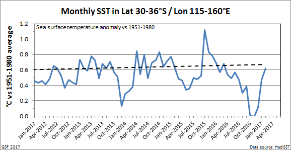 SST_monthly_recent