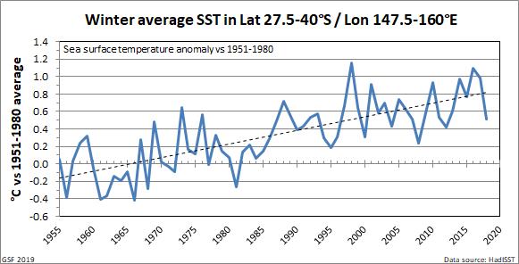 Tasman SST winter trend 2019